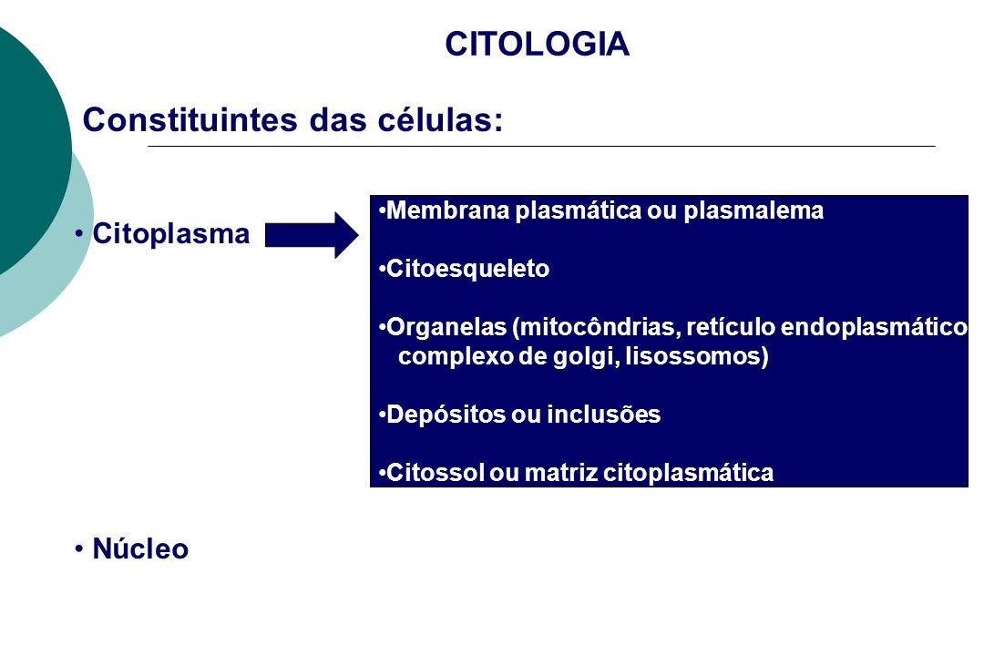 CITOLOGIA Constituintes das células: Citoplasma Núcleo