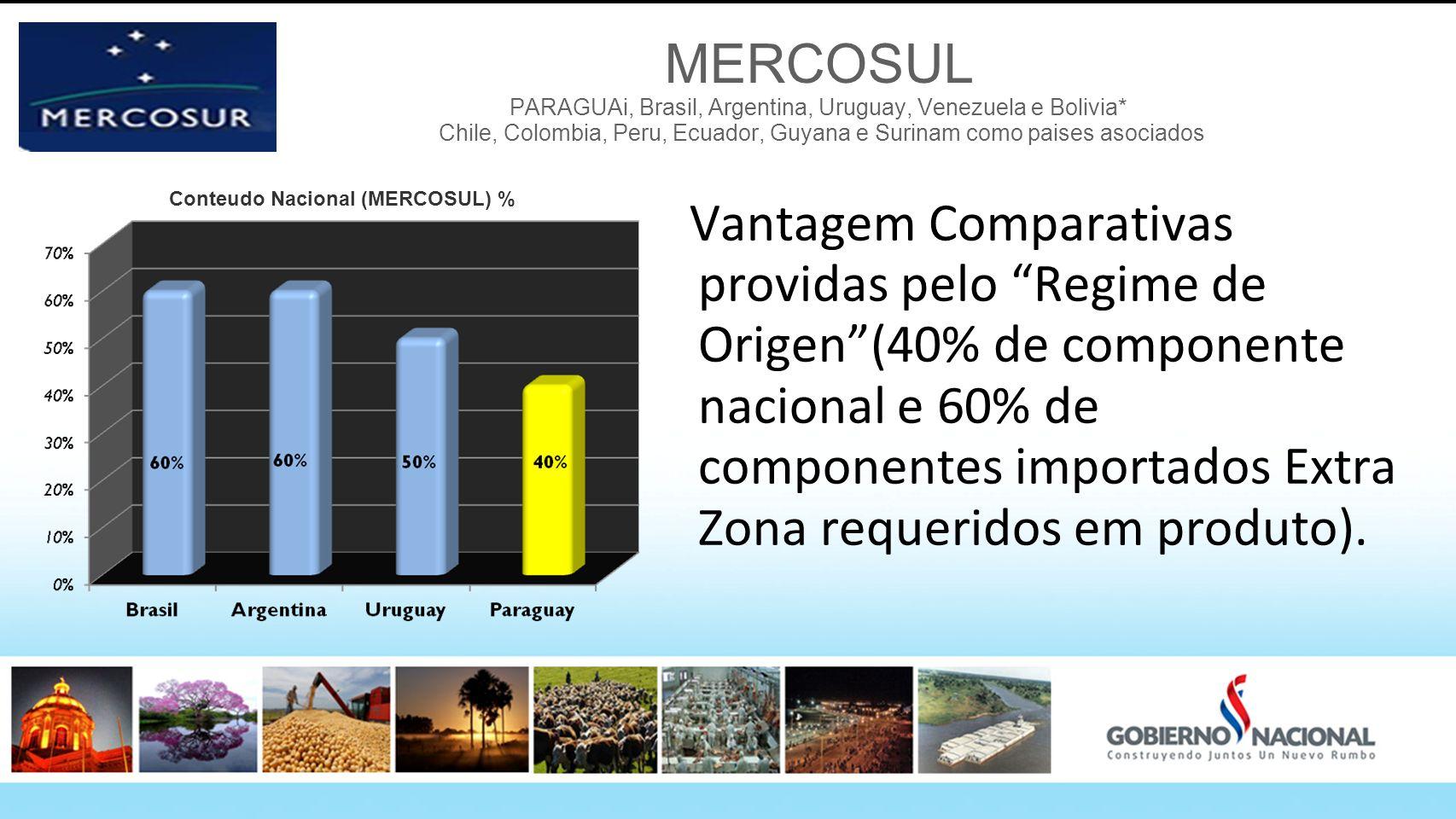 MERCOSUL PARAGUAi, Brasil, Argentina, Uruguay, Venezuela e Bolivia