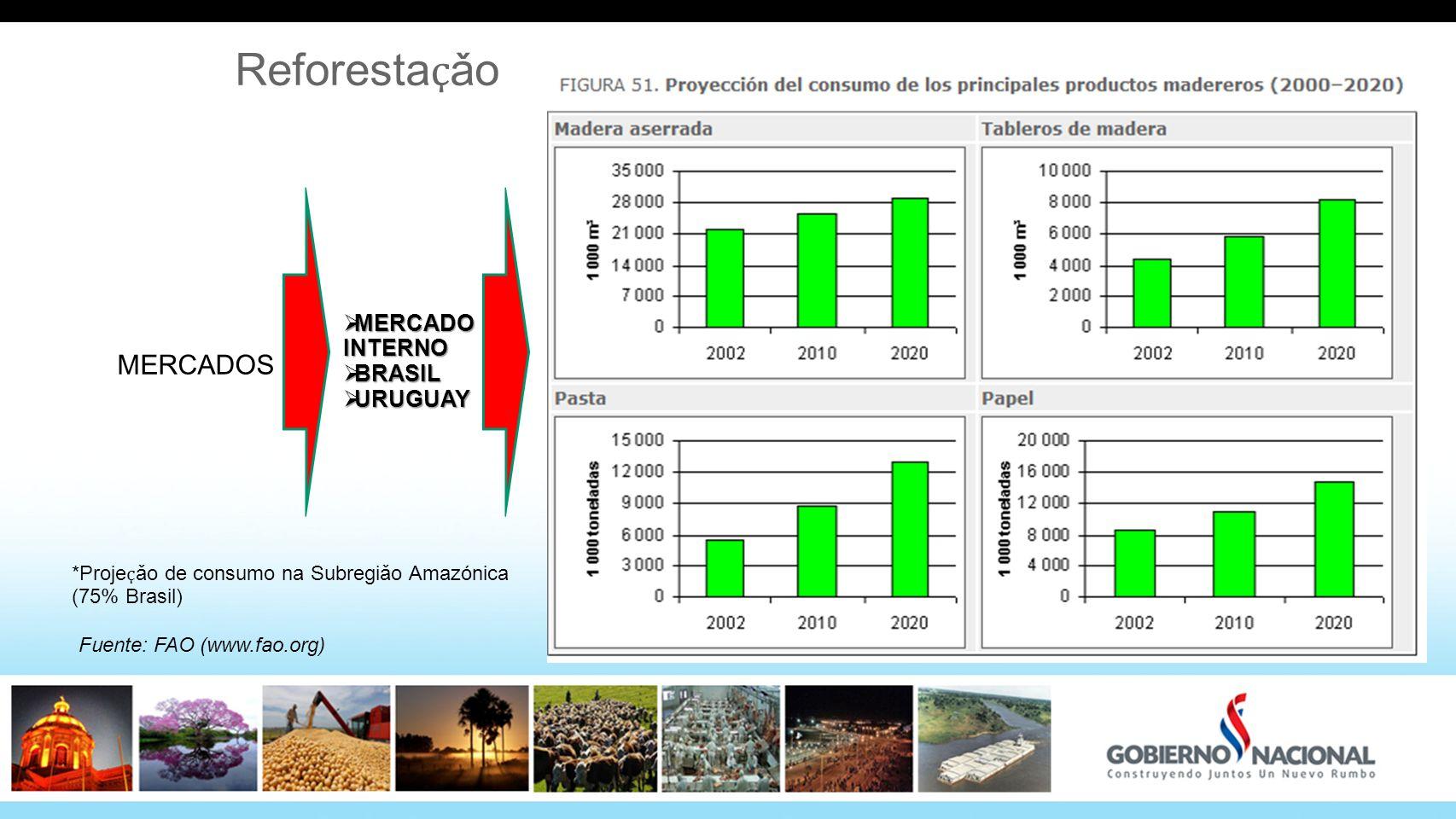 Reforestaҫǎo MERCADOS MERCADO INTERNO BRASIL URUGUAY