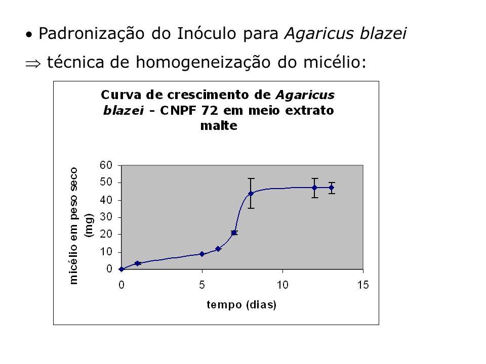  Padronização do Inóculo para Agaricus blazei