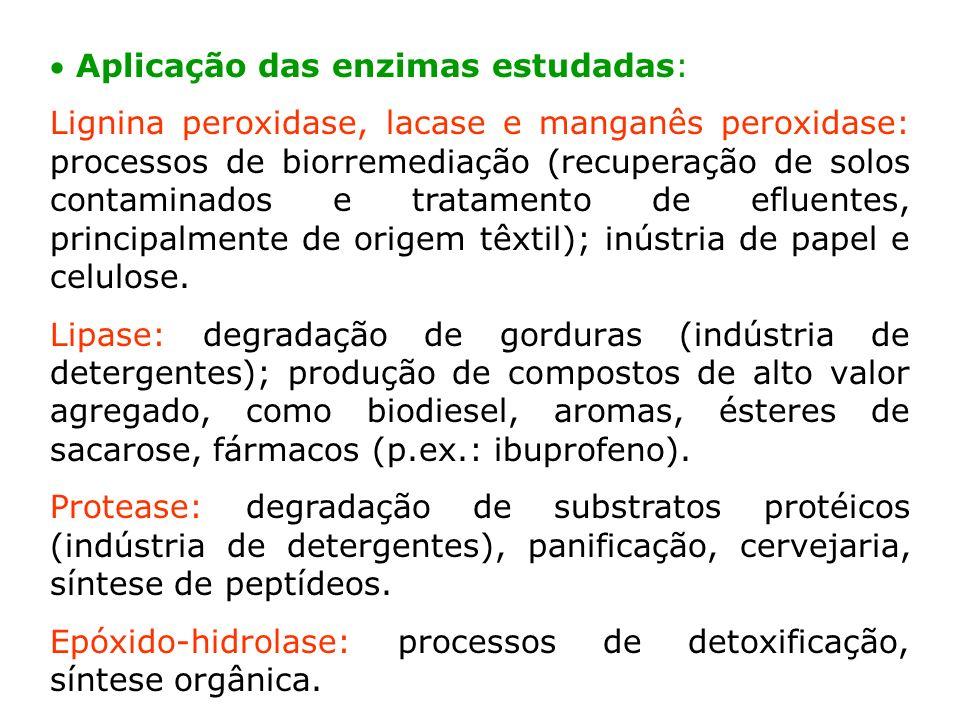  Aplicação das enzimas estudadas: