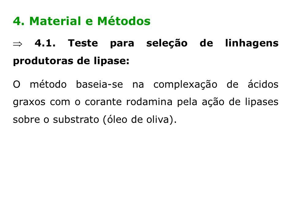 4. Material e Métodos  4.1. Teste para seleção de linhagens produtoras de lipase: