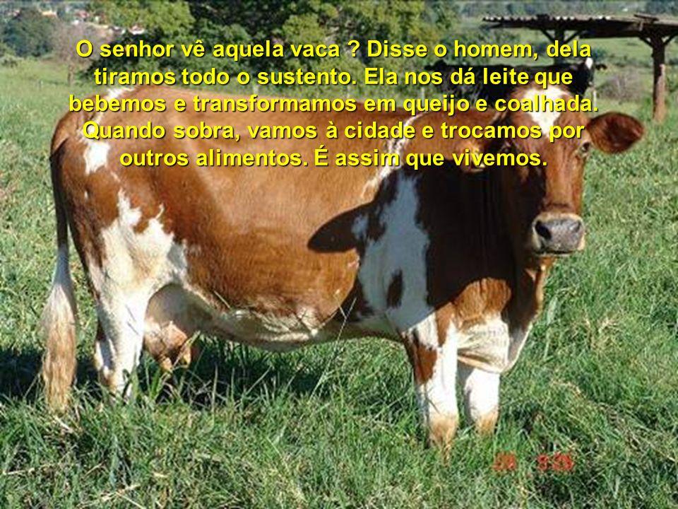 O senhor vê aquela vaca. Disse o homem, dela tiramos todo o sustento