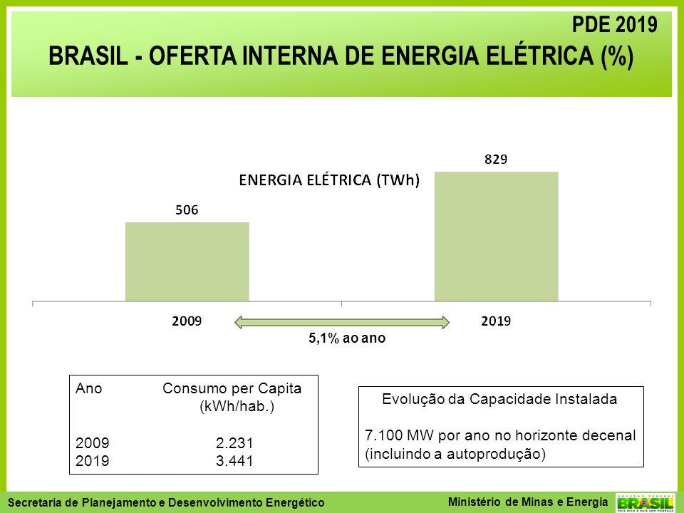 BRASIL - OFERTA INTERNA DE ENERGIA ELÉTRICA (%)