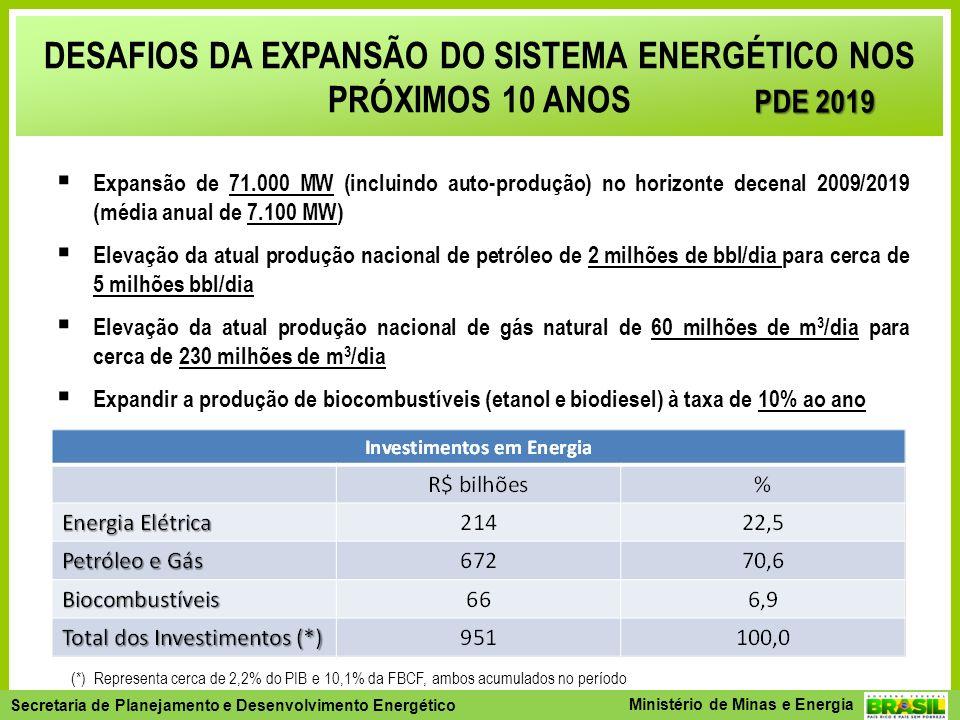 DESAFIOS DA EXPANSÃO DO SISTEMA ENERGÉTICO NOS PRÓXIMOS 10 ANOS