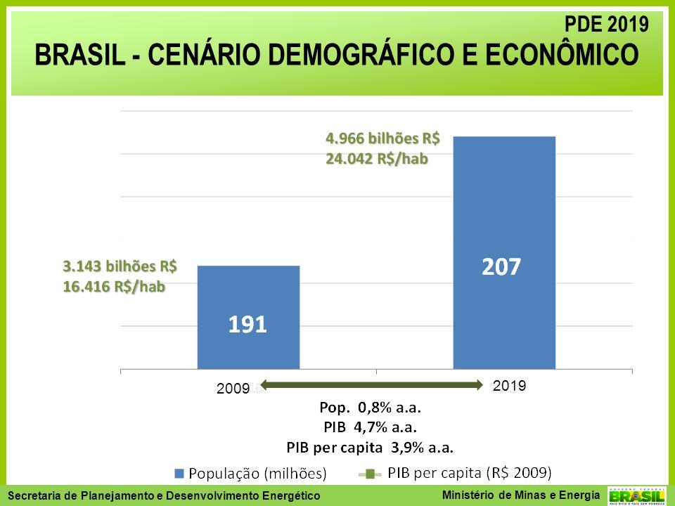 BRASIL - CENÁRIO DEMOGRÁFICO E ECONÔMICO