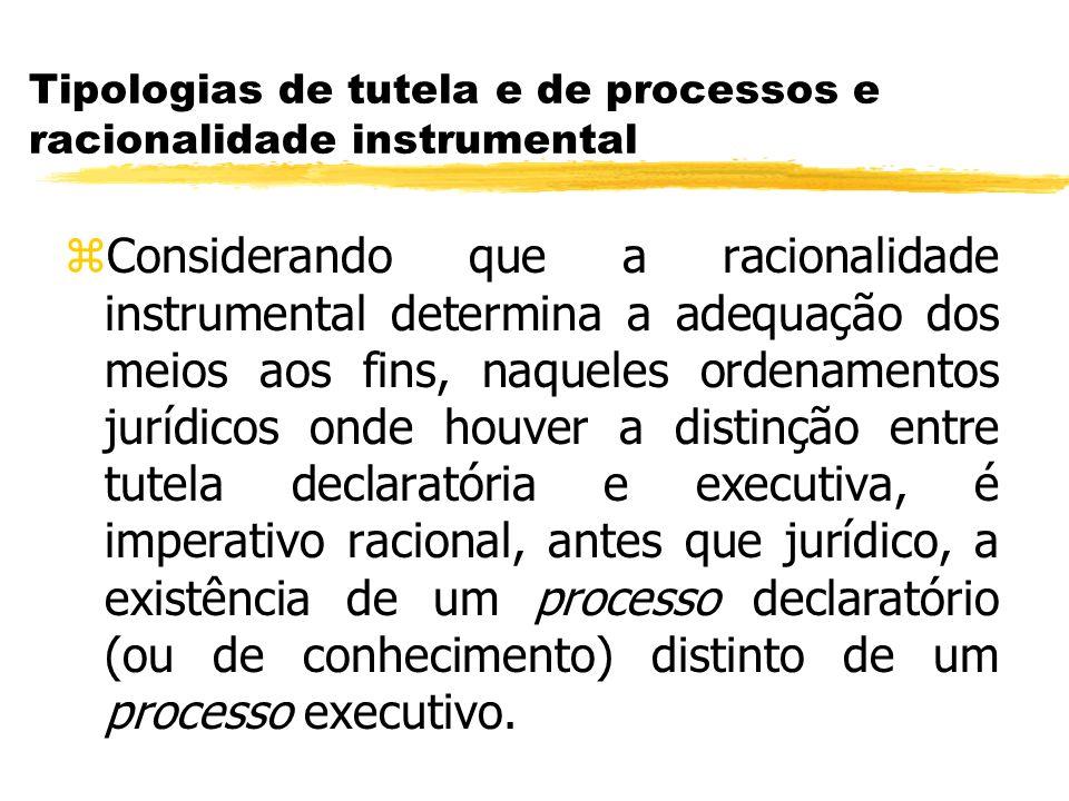 Tipologias de tutela e de processos e racionalidade instrumental