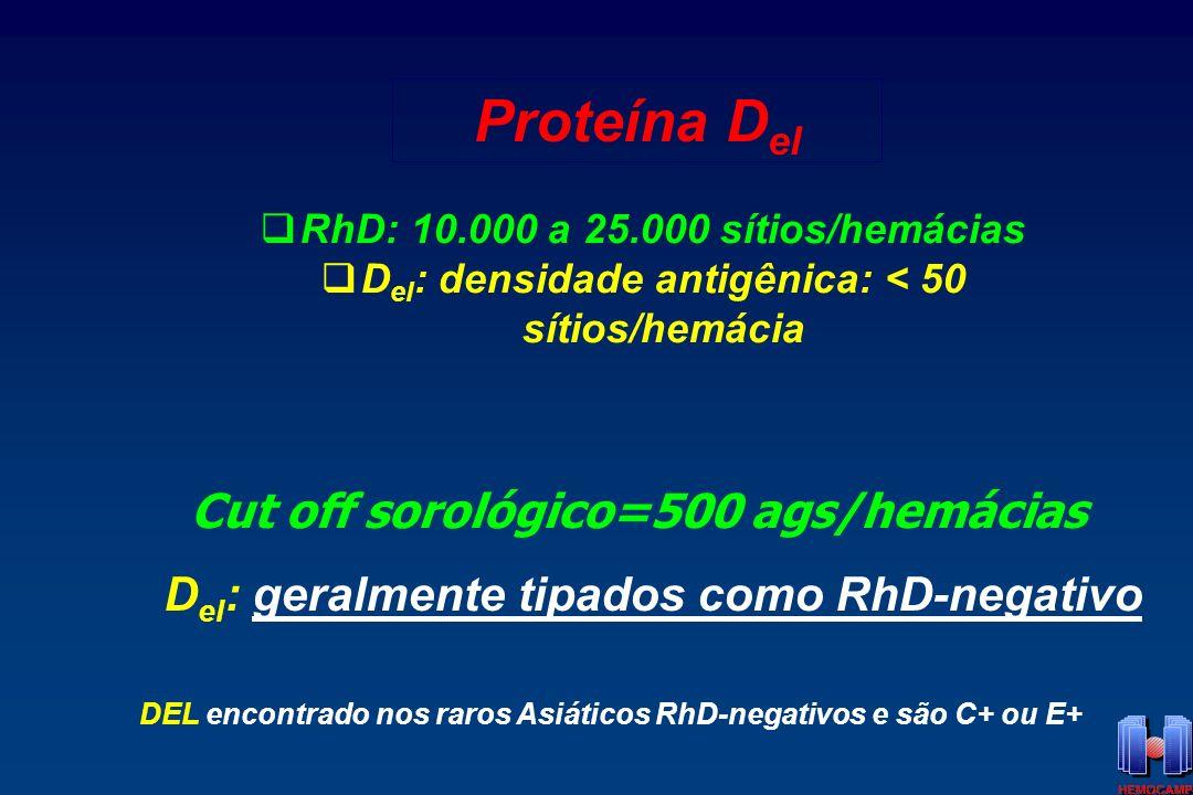 Proteína Del Cut off sorológico=500 ags/hemácias
