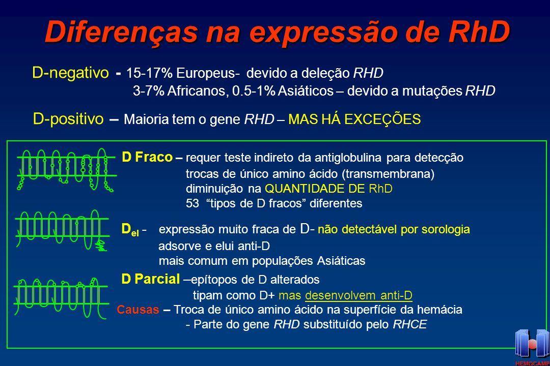 Diferenças na expressão de RhD
