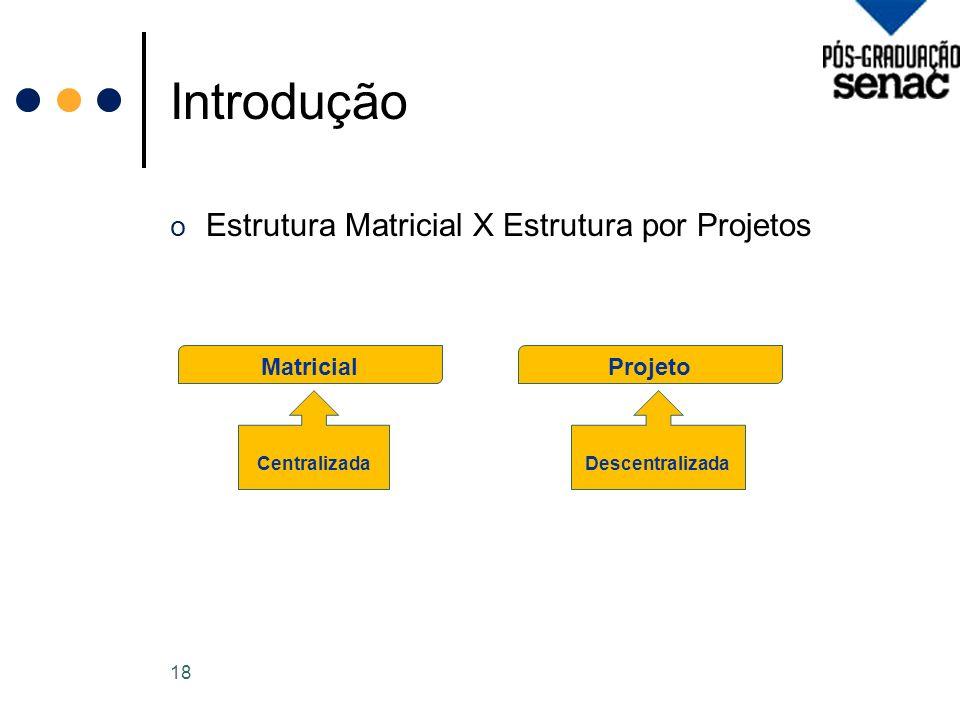 Introdução Estrutura Matricial X Estrutura por Projetos Matricial