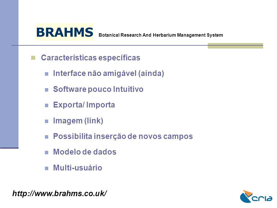 B R A H M S Características específicas Interface não amigável (ainda)