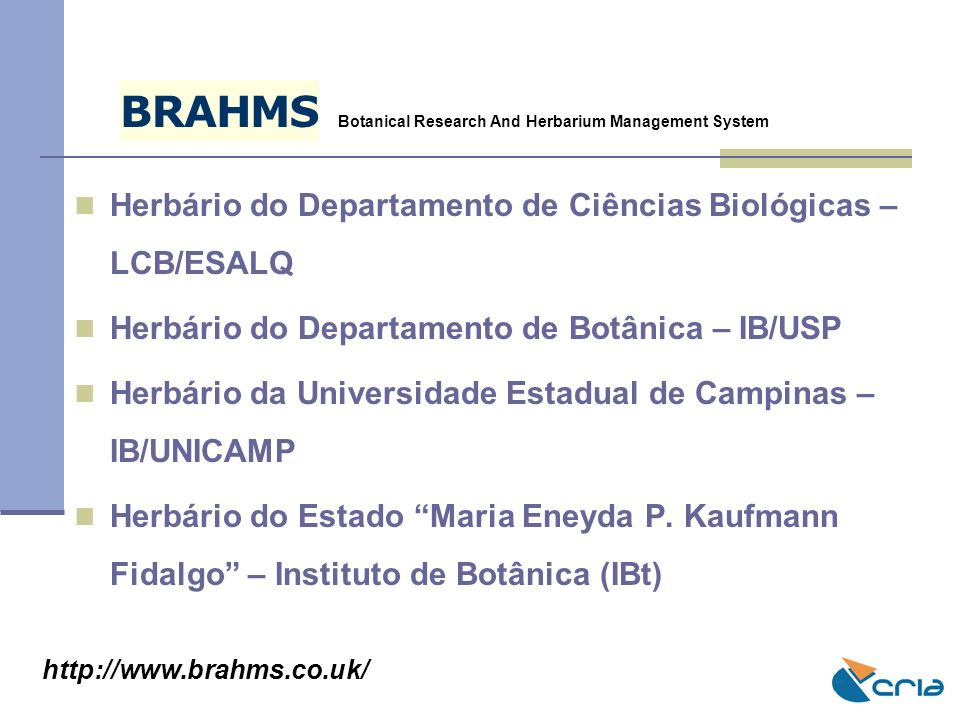 B R. A. H. M. S. Botanical Research And Herbarium Management System. Herbário do Departamento de Ciências Biológicas – LCB/ESALQ.
