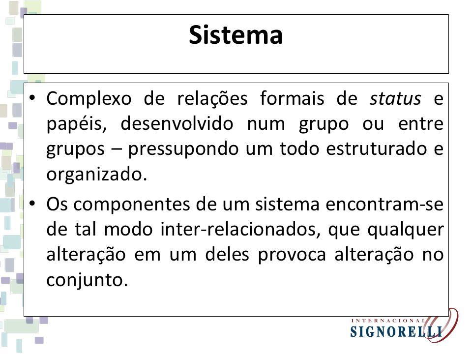 Sistema Complexo de relações formais de status e papéis, desenvolvido num grupo ou entre grupos – pressupondo um todo estruturado e organizado.
