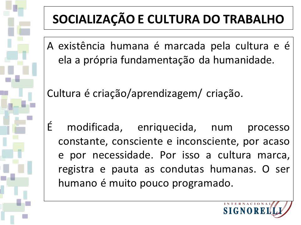 SOCIALIZAÇÃO E CULTURA DO TRABALHO