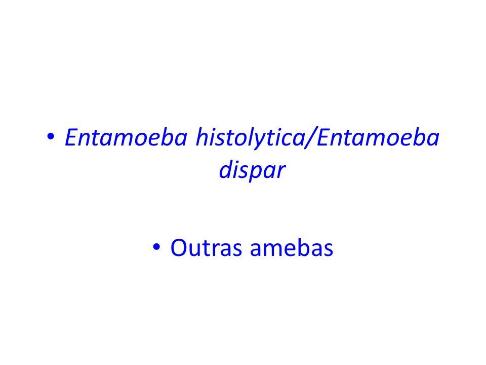 Entamoeba histolytica/Entamoeba dispar