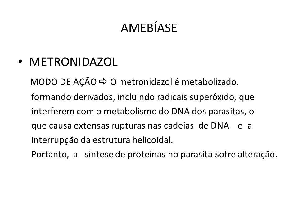 MODO DE AÇÃO  O metronidazol é metabolizado,