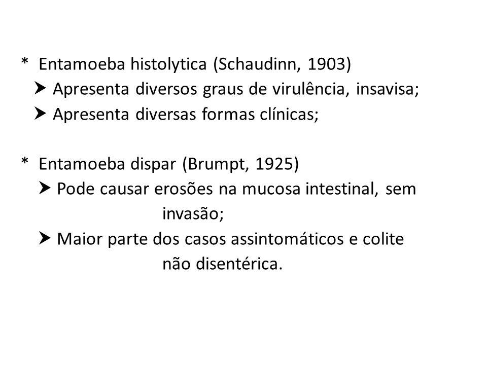 * Entamoeba histolytica (Schaudinn, 1903)  Apresenta diversos graus de virulência, insavisa;  Apresenta diversas formas clínicas; * Entamoeba dispar (Brumpt, 1925)  Pode causar erosões na mucosa intestinal, sem invasão;  Maior parte dos casos assintomáticos e colite não disentérica.