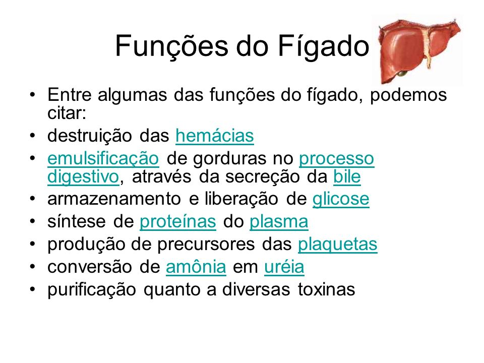 Funções do Fígado Entre algumas das funções do fígado, podemos citar: