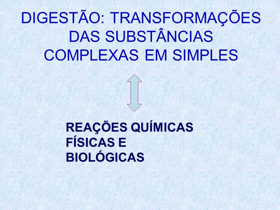 DIGESTÃO: TRANSFORMAÇÕES DAS SUBSTÂNCIAS COMPLEXAS EM SIMPLES