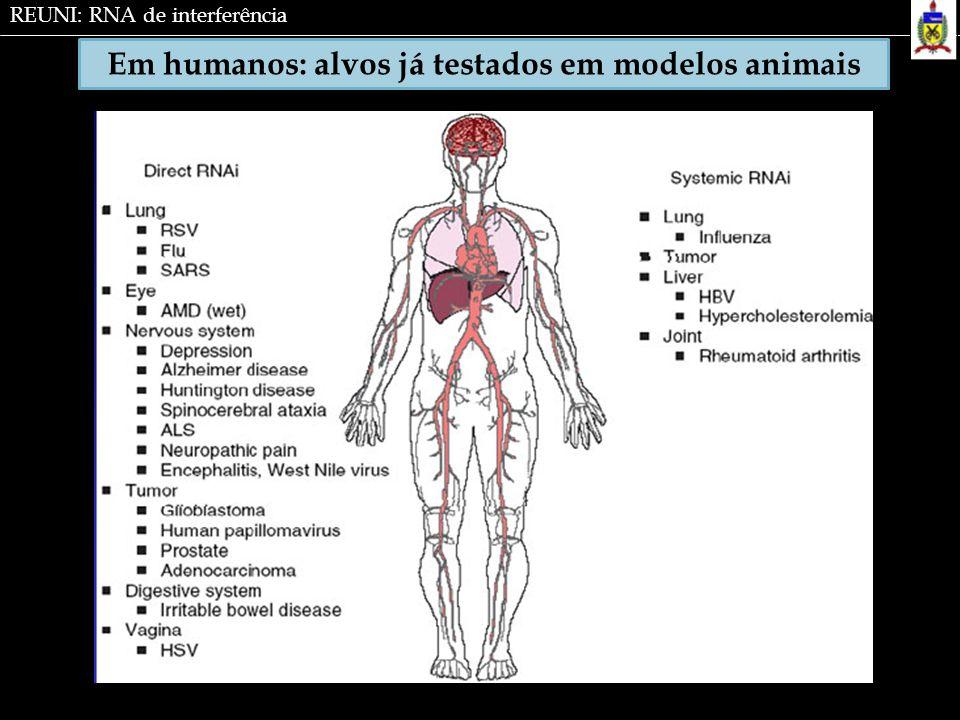 Em humanos: alvos já testados em modelos animais