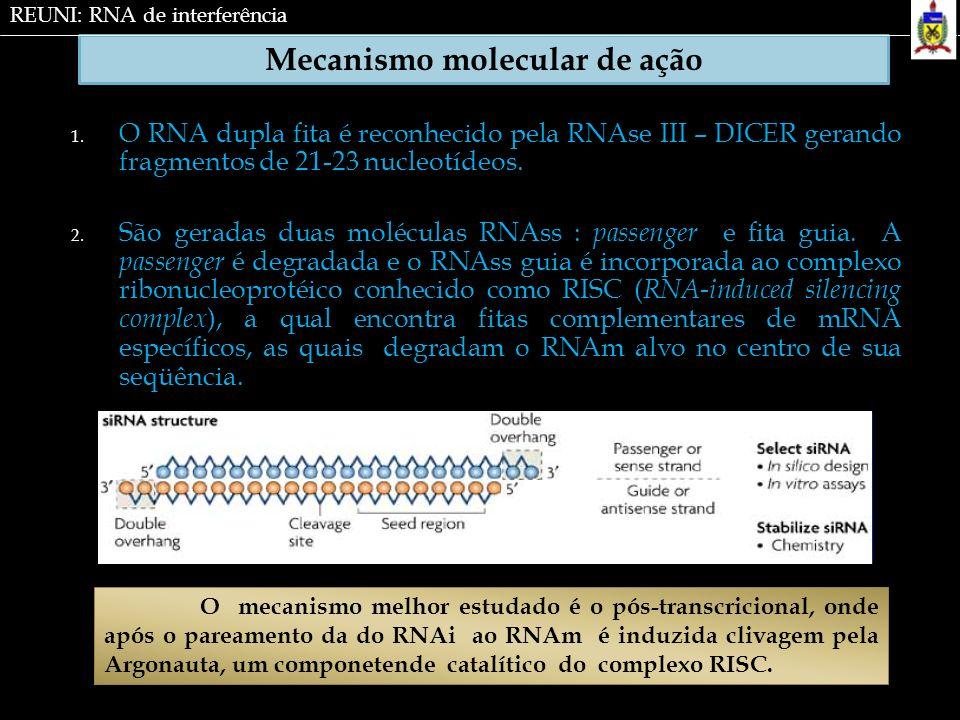 Mecanismo molecular de ação