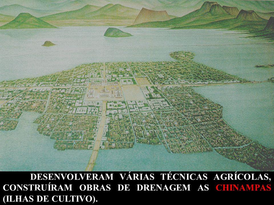 DESENVOLVERAM VÁRIAS TÉCNICAS AGRÍCOLAS, CONSTRUÍRAM OBRAS DE DRENAGEM AS CHINAMPAS (ILHAS DE CULTIVO).