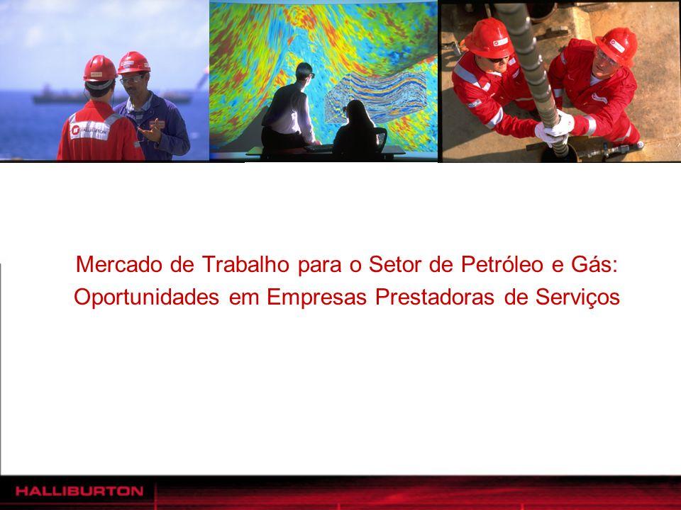 Mercado de Trabalho para o Setor de Petróleo e Gás: Oportunidades em Empresas Prestadoras de Serviços