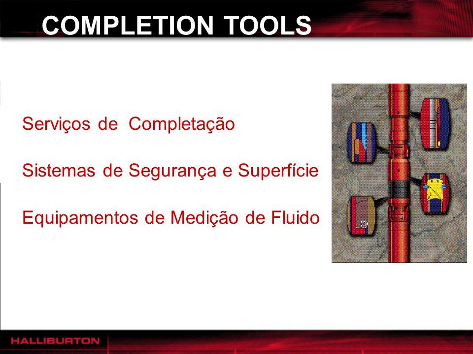 COMPLETION TOOLS Serviços de Completação