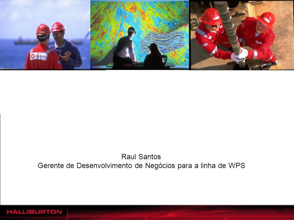 Gerente de Desenvolvimento de Negócios para a linha de WPS
