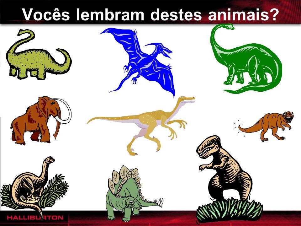 Vocês lembram destes animais