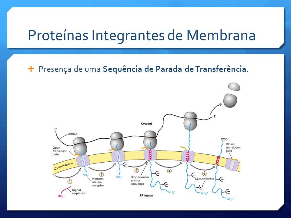 Proteínas Integrantes de Membrana