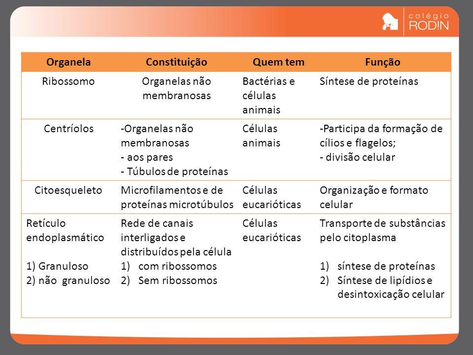Organelas não membranosas
