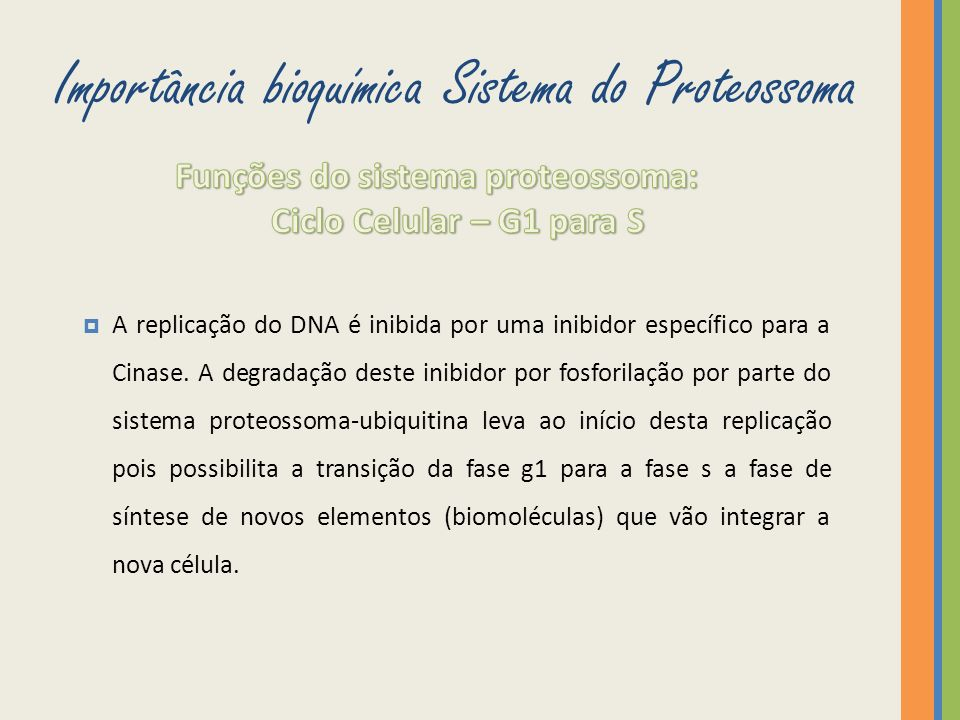 Importância bioquímica Sistema do Proteossoma