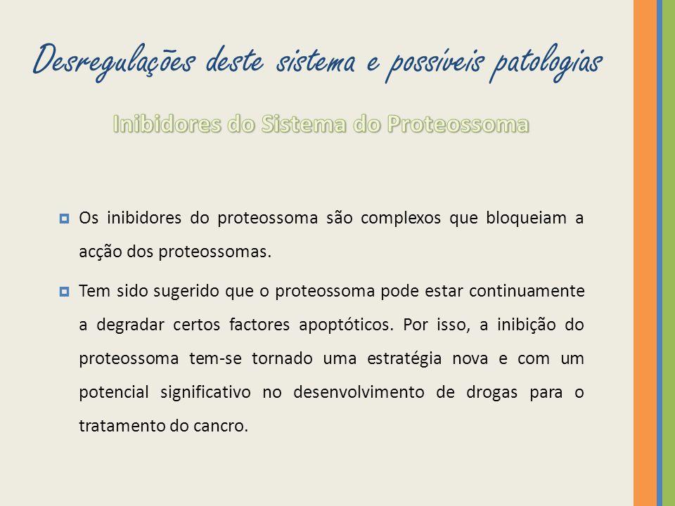 Desregulações deste sistema e possíveis patologias