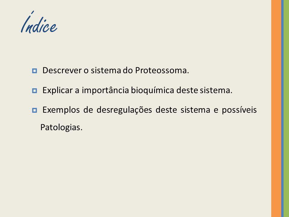 Índice Descrever o sistema do Proteossoma.