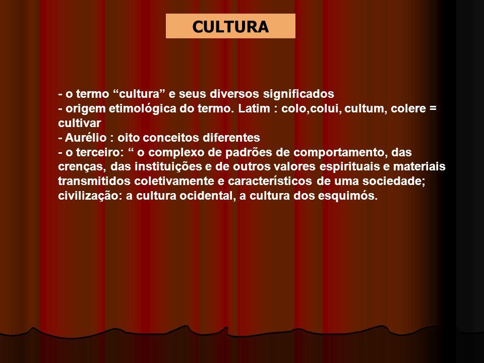 CULTURA - o termo cultura e seus diversos significados