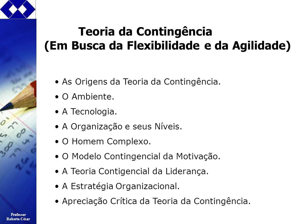 Teoria da Contingência (Em Busca da Flexibilidade e da Agilidade)