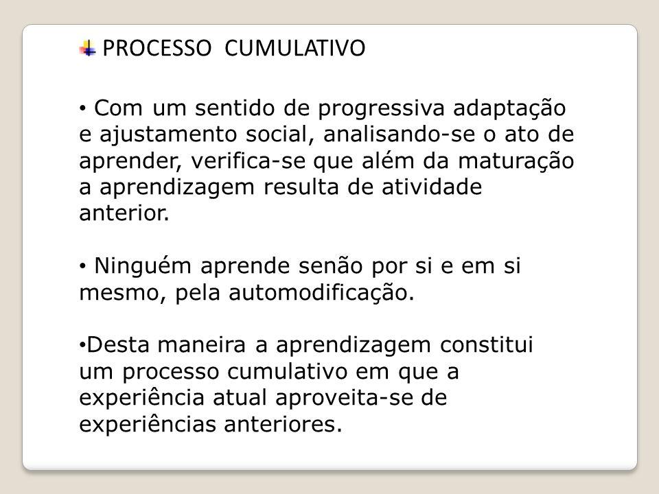 PROCESSO CUMULATIVO