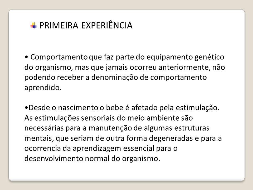 PRIMEIRA EXPERIÊNCIA