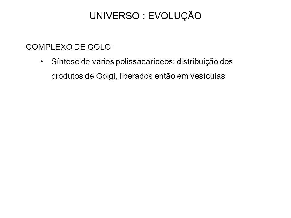 UNIVERSO : EVOLUÇÃO COMPLEXO DE GOLGI