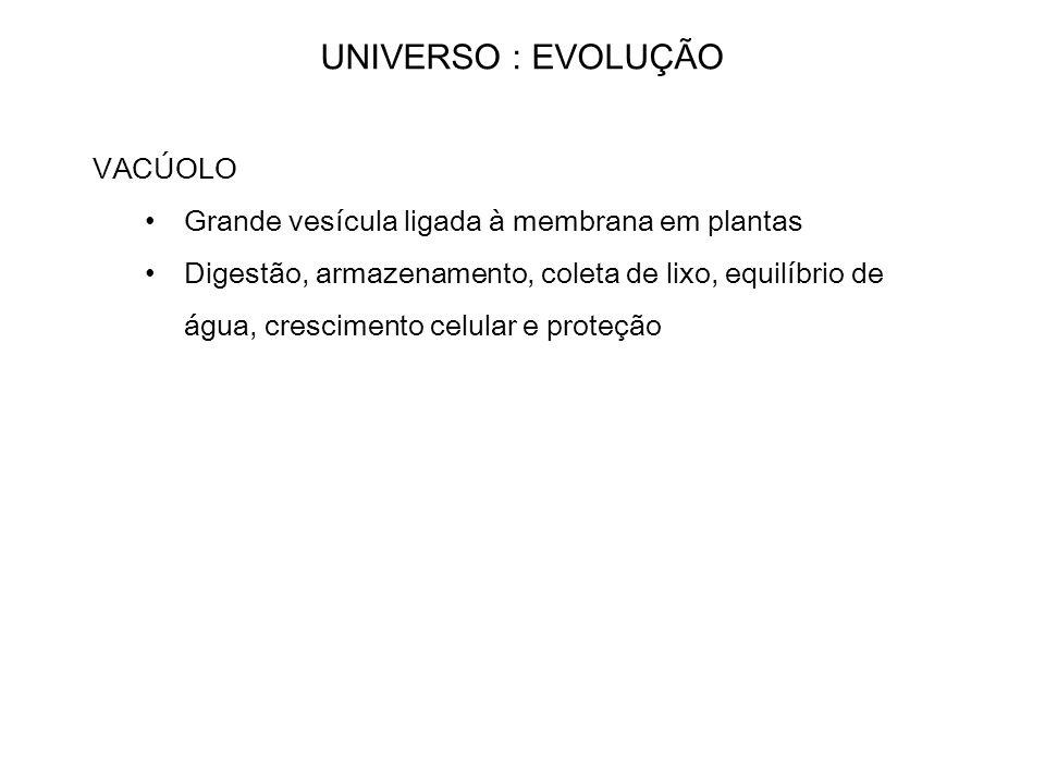 UNIVERSO : EVOLUÇÃO VACÚOLO