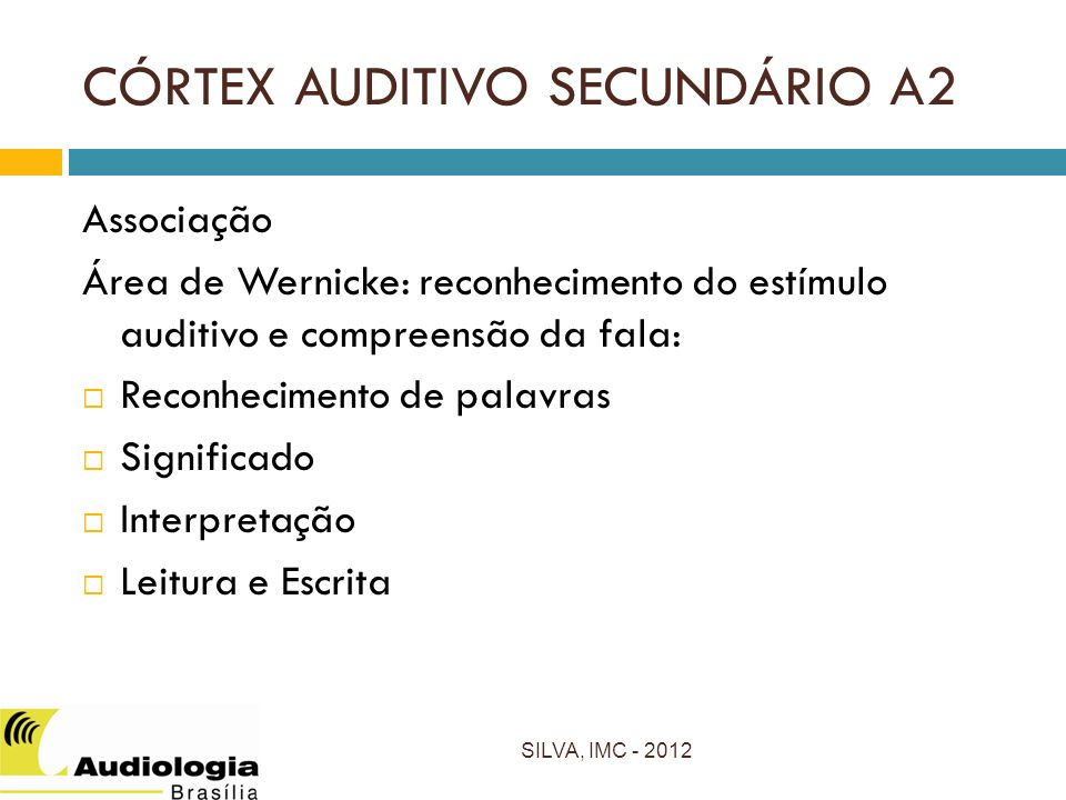 CÓRTEX AUDITIVO SECUNDÁRIO A2