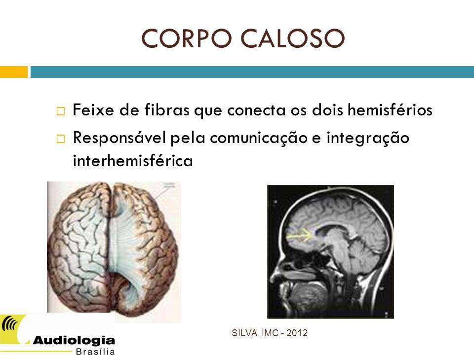 CORPO CALOSO Feixe de fibras que conecta os dois hemisférios