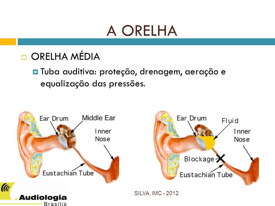 A ORELHA ORELHA MÉDIA. Tuba auditiva: proteção, drenagem, aeração e equalização das pressões.