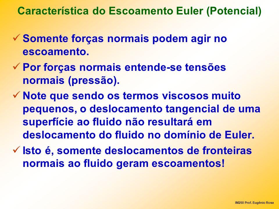 Característica do Escoamento Euler (Potencial)