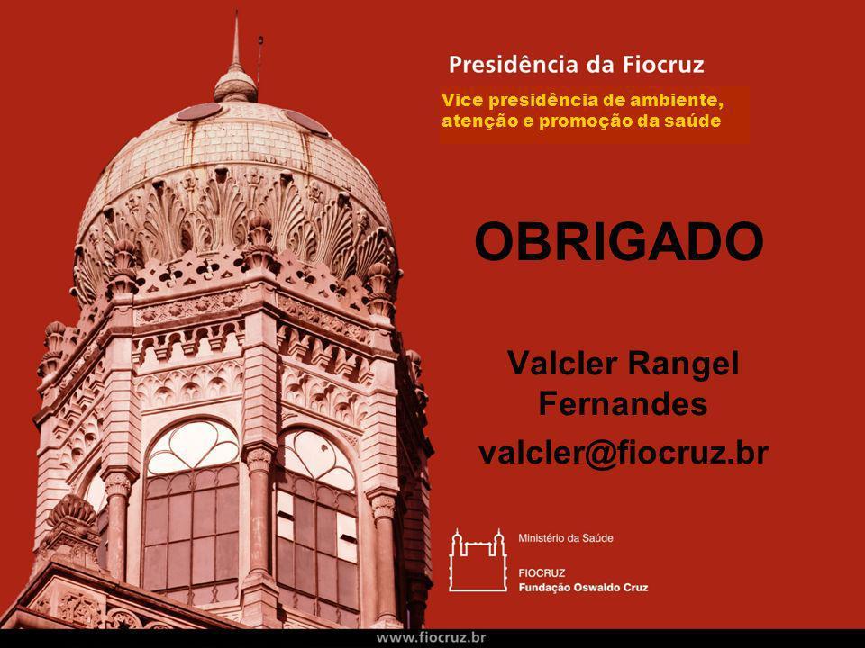 Valcler Rangel Fernandes valcler@fiocruz.br