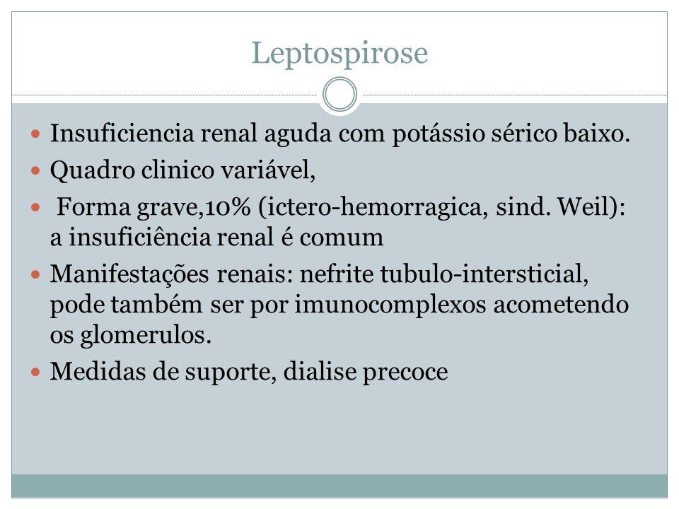 Leptospirose Insuficiencia renal aguda com potássio sérico baixo.