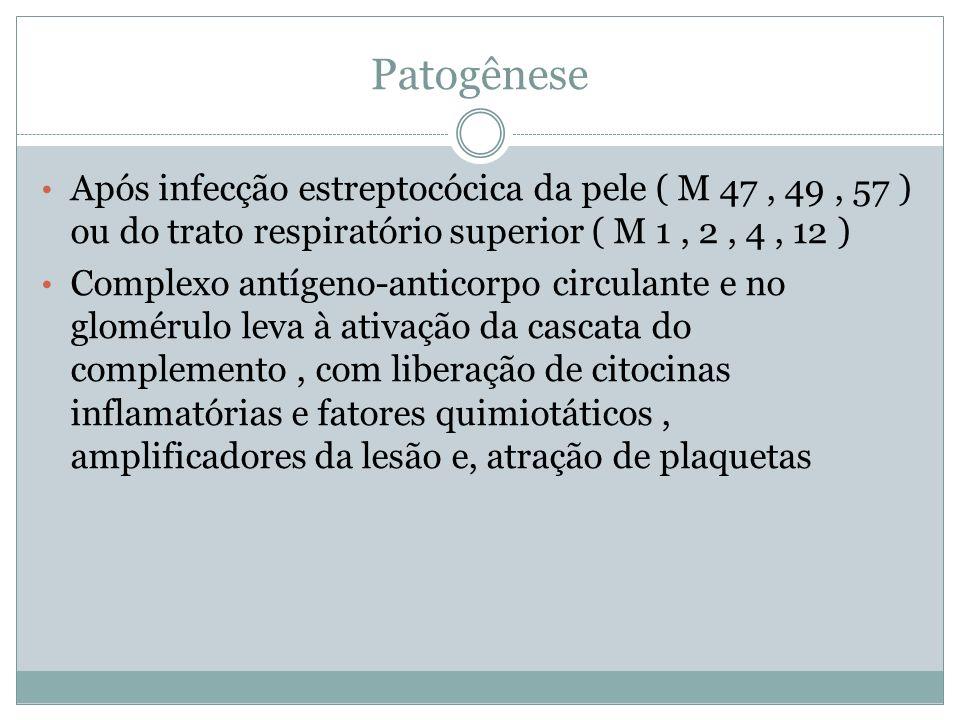 Patogênese Após infecção estreptocócica da pele ( M 47 , 49 , 57 ) ou do trato respiratório superior ( M 1 , 2 , 4 , 12 )