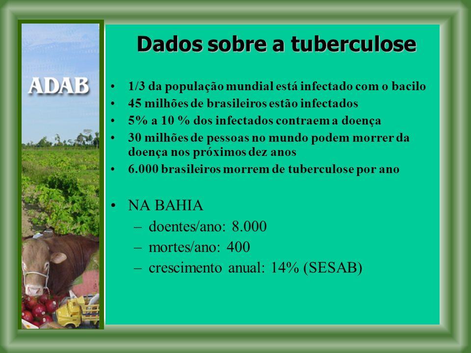Dados sobre a tuberculose