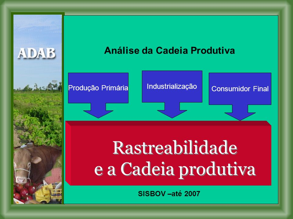 Análise da Cadeia Produtiva